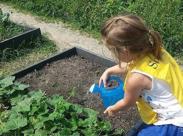 girl watering garden at preschool