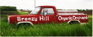 breezy hill orchard